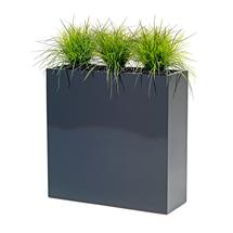 Traviny v květináči, výška 1200 mm