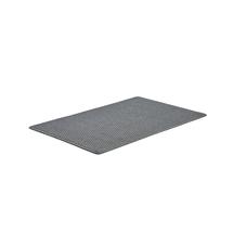 Vstupní rohož Enter, 1800x1200 mm, světle šedá