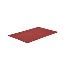 Vstupní rohož Enter, 1800x1200 mm, červená